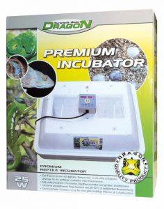 Dragon Inkubator kaufen