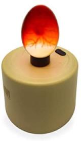Schierlampe mit befruchteten Ei